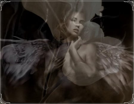 Angelic_Ambiance - Angels, fantasy, angels and demons, heavenly