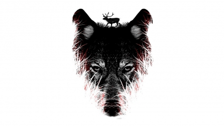 Wolf Art Other Abstract Background Wallpapers On Desktop