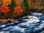 fast moving creek in autumn