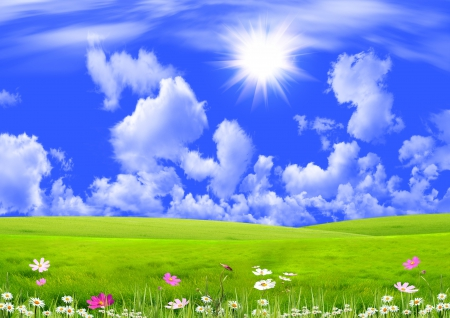 Spring Meadow - sun, grass, spring, sky, green, flowers, sunshine, field, meadow