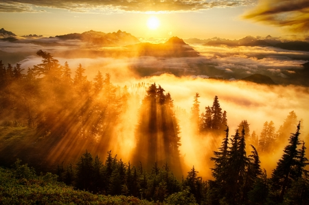 Sunset over Valley - sunrays, mountains, clouds, firs, mist