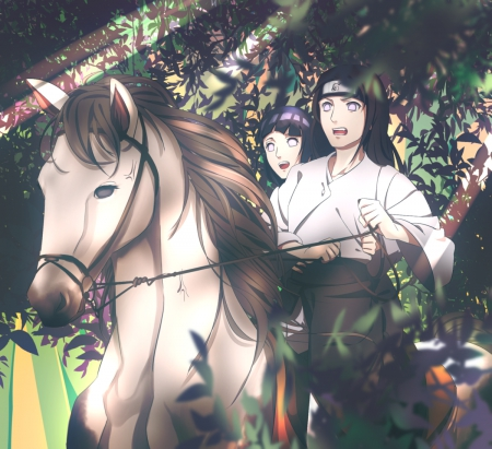 Hyuuga ♡ - pretty, hyuuga hinata, naruto, guy, animal, sweet, nice, hinata hyuuga, anime, anime girl, neji, hyuuga, couple, ninja, shinobi, female, male, lovely, byakugan, horse, hyuuga neji, boy, girl, hinata