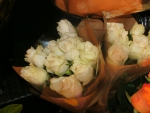 White Rose Buds