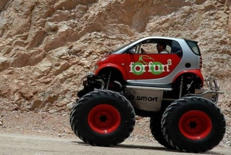 Smart Monster - cars, custom cars, smart car, vehicles, monster trucks