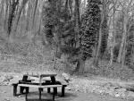 Vintage Park Scene