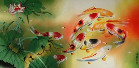 Koi Fish - pretty, carp, lovely, fish, beautiful, koi, sweet, pond, nice, water, oriental, feng shui, swim, painting, beauty