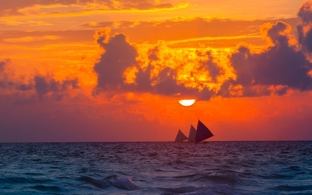 Sailing - sun, ocean, sailing, sunset, sky, clouds, sea, splendor, nature, sailboats