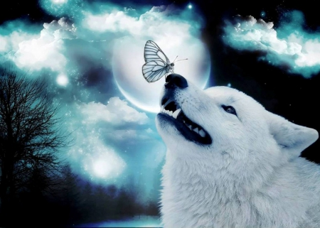 The Messenger - Sky, Messenger, Spirits, nature, Wolf, animals, Butterfly