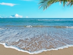 ♥Tropical Beach♥