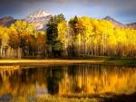 Beef Basin Pond, Utah