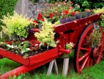 Spring carriage
