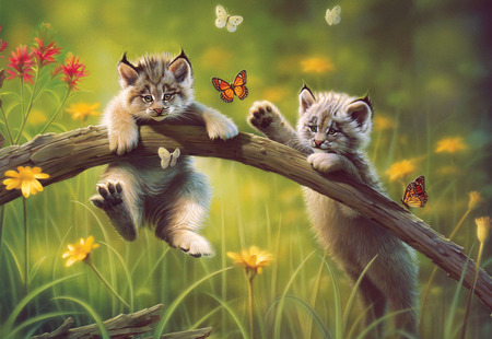 Cats - butterfly, its so cool, cat, cats, painting, sweet