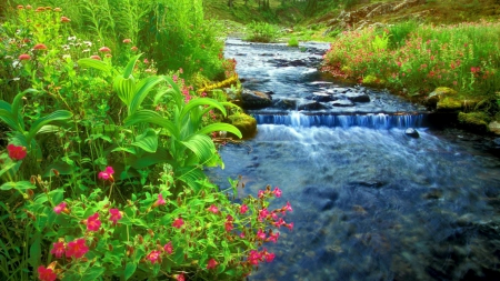 flowers around a flowing river - rocks, flowing, banks, flowers, river
