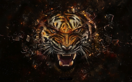 Tiger - Tiger, Animal, Scary, Glass
