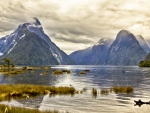 beautiful milford sound in new zealand