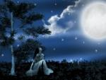 ~*~ Full Moon Night ~*~
