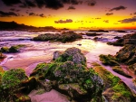 Beautiful reefs in sunset