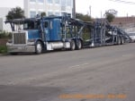 PETERBILT CAR CARRIER