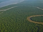 Amazon Rain Forest River Basin