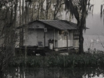 Interesting Swamp House