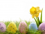♥Easter Time♥