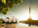 *A beautiful basket of flowers along the Seine*