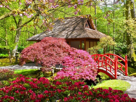 Delicieux Japanese Garden   Pretty, Colorful, Cottage, Beautiful, Nice, Bridge,  Flowers
