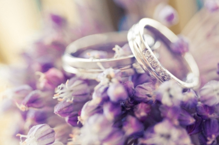 Wedding Flowers Amp Nature Background Wallpapers On