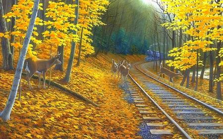 ★Fall Deer Tracks★ - Deer & Animals Background Wallpapers on Desktop Nexus (Image 1718186)
