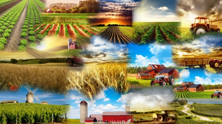 Farmers Collage - windmill, farmers, silo, ranch, farms, tractors, collage, country, sky, barn, fields
