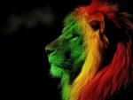 Soul Of Lion