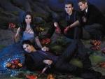 Vampire Diaries (2009-)