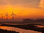 turbine windmills in wetlands at sunset