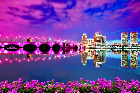 Pink bridge flower in seashore - colorful, plant, clouds, high quality, sea, beach, photography, city, splendor, bridge, flowers, lovely flowers, evening, night, buildings, colors, places, sky, seashore, paradise, flower, violet, nature, beautiful sky, landscape