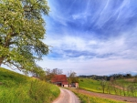 wonderful rural scene hdr