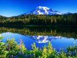 Mountain peak reflection