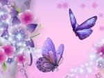 Delicate in lavender