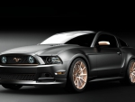 Muscle Mustang's Top 10 Ford Mustangs in America  for 2013
