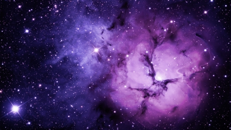 Purple Galaxy - nebulae, cool, blue, black, hd, awesome, white, widescreen, picture, nebula, artistic, galaxy, beautiful, amazing, high definition, art, infinity, universe, galaxies, astronomy, nice, purple, space, image, stars, view, cosmos, spatial