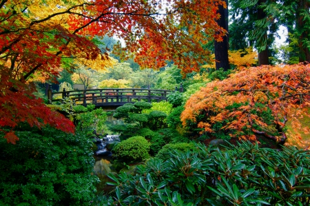 Japanese Garden - bridge, red autumn, flowers, yellow leaves, garden, beautiful, trees, green foliage