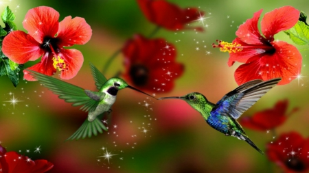Hummingbirds In Love