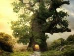 Enchanted tree