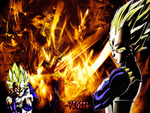 DragonBallZ Vegeta The Prince