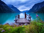Wooden dock at norwegian lake