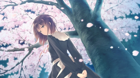 Mayuri Kousaka Other Anime Background Wallpapers On Desktop Images, Photos, Reviews