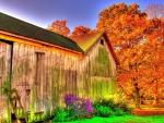 beautiful barn hdr