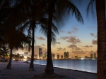 beautiful tropical cityscape