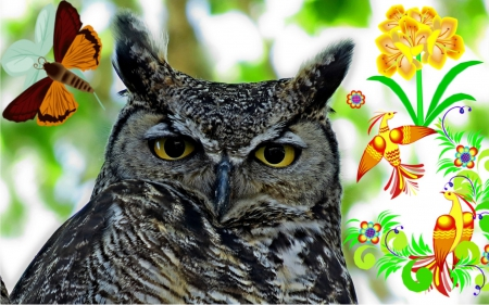 Grand Master - bird, outdoor, owl, nature