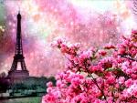 Paris spring in pink