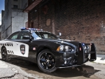 Dodge-Charger-Pursuit